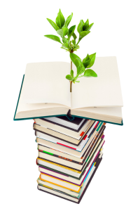 photo of plant growing from a stack of books